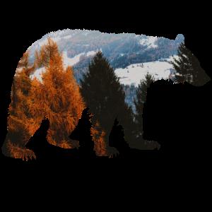 Bärenwald-Abenteuer