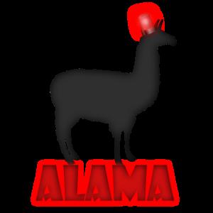 Alama das Lama kommt