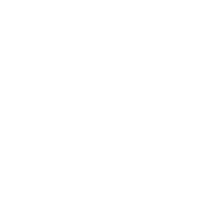 Wolf Tattoo Dreieck helles Design