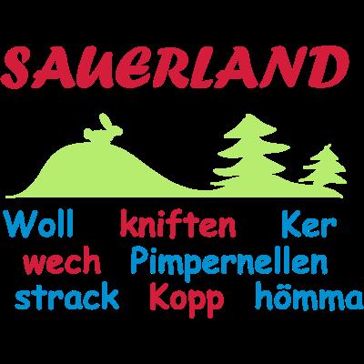 Sauerland - Sauerland - Land der tausend Berge - Winterberg,Sundern,Schützenfest,Schmallenebrg,Sauerland,Olsberg,Meschede,Menden,Lennestadt,Iserlohn,Hochsauerland,Hemer,Brilon,Balve