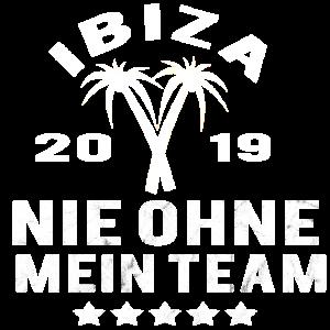Ibiza 2019 Party Urlaub Sauftour Team Palmen