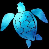 Marine Biology Meeres Biologie Ozean Meeresbiologe