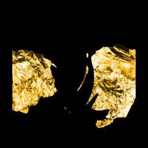 Gold Feder