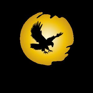 Fliegender Adler am Himmel Eagle Raubvogel Flügel