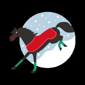 Schnee Pferd Pferd Bilder Fuchs Pferde Geschenk