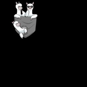 Alpakas in Tasche Alpaca Pocket Animal Geschenk