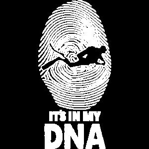 Tauchen DNA