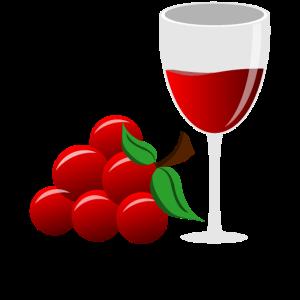 Wein Weinrebe Weinglas