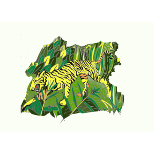 Tiger Katze Urwald Grün Gelb
