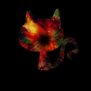 Universum in einer Katze Weltall Astrocat