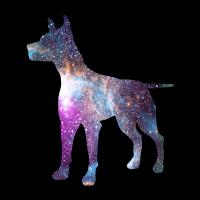 Universum Hund Hundebesitzer Geschenkidee