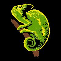 Chamäleon Reptil