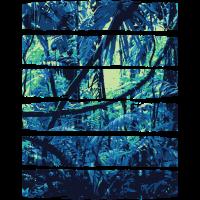 Natur & Fashion - Dschungelfieber