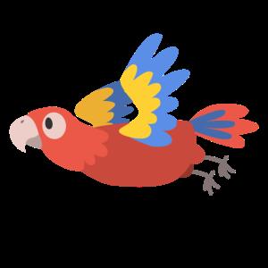 Papagei Flug