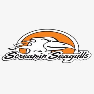 ScreamingSeagulls
