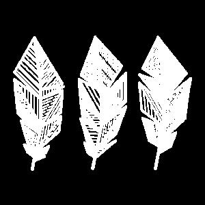 Pattern Feather / boho, hippie, linear, geo