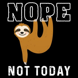 Nope Not Today Funny Sloth
