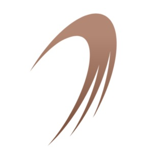 Icone du logo d'IslandGAME