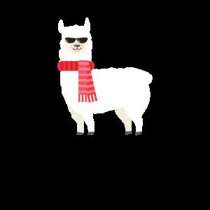 Süßes & entzückendes Lama mit cooler Sonnenbrille