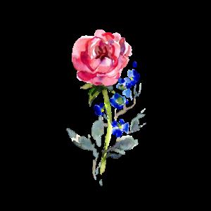 Rose, Blumen, Blume, Handgemalt, Aquarell