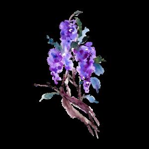 Blume, Blumen, Blumenmotiv, Aquarell, Handgemalt