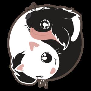 Yin Yang Katze Hund schwarz-weiß - Geschenkidee