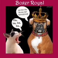 pintiponti Boxer: Bin die krone der schoepfung