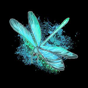 Libelle Insekt Teich Tümpel Bunt Geschenkidee