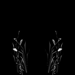 Gartenfee schwarz 1