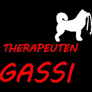 Gassi Hund Dog