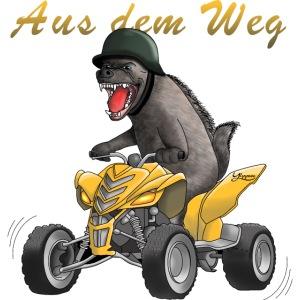 Wilder Quad Fahrer