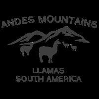 Andes Mountains Llamas South America