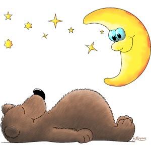 süßer Teddybär - Bär