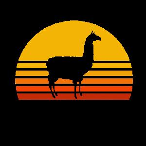 Alpaka Sonnenuntergang Retro