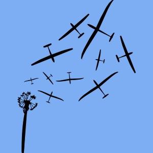 pusteblume Segelflugzeug