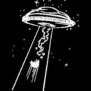 Katze Ufo