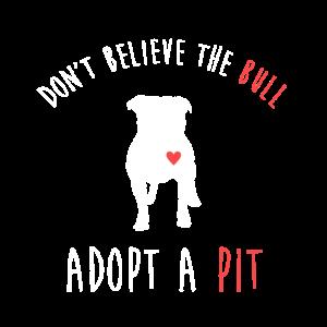 Glauben Sie nicht, dass der Bulle eine Grube adoptiert - Pitbull
