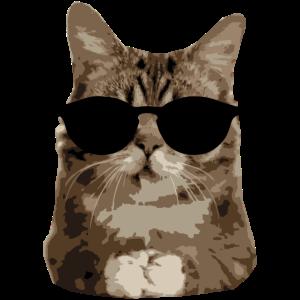 "Katze Sonnebrille ""OM"""