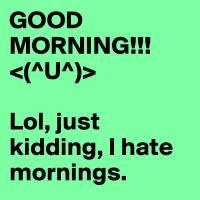 Guten Morgen Lol, nur ein Scherz, ich hasse Morgen