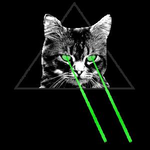 Laserstrahl Katze Kater Kittem Dreieck Geschenk
