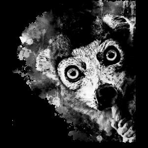 Maki Lemur Affe ws bw
