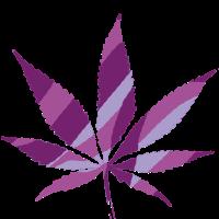 hanfblatt pink life weed love