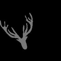 Wildhirsch