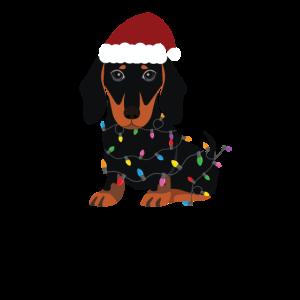 Weihnachtsdackel-niedlicher Hund Sankt-Hut