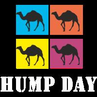 Hump Day Dromedar