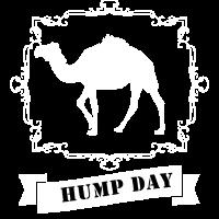 Humpday Humpday Dromedar Kamel