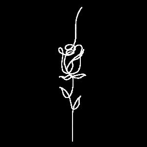 Rose eine Linie minimalistisch