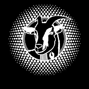 Ziege Hornträger Ziegenkopf Ziegen