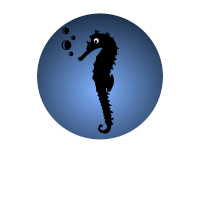 Aquarium Unterwasser Luftblasen