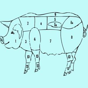 Zerlegeplan Hausschwein
